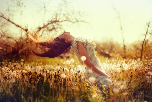 dress,field,girl,hair,it,freedom,dandelions-35394127505c761ecf4d0fe5dd893149_h_large
